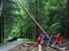 Einsatzuebung Sommerholz (10)