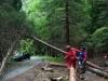 Einsatzuebung Sommerholz (11)