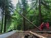 Einsatzuebung Sommerholz (8)