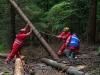 Einsatzuebung Sommerholz (9)
