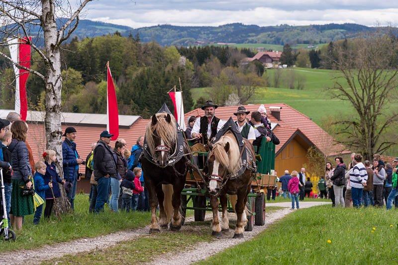 Kirchberger Georgiritt in Eugendorf am 17.04.2016  Foto und Copyright: Moser Albert, Fotograf, 5201 Seekirchen, Weinbergstiege 1, Tel.: 0043-676-7550526 mailto:albert.moser@sbg.at  www.moser.zenfolio.com